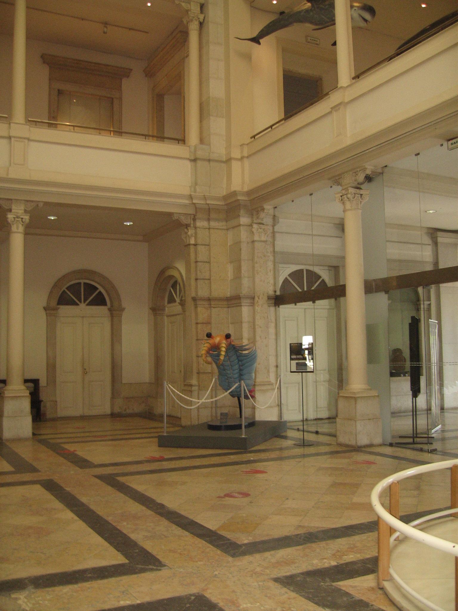 Museu de ciência